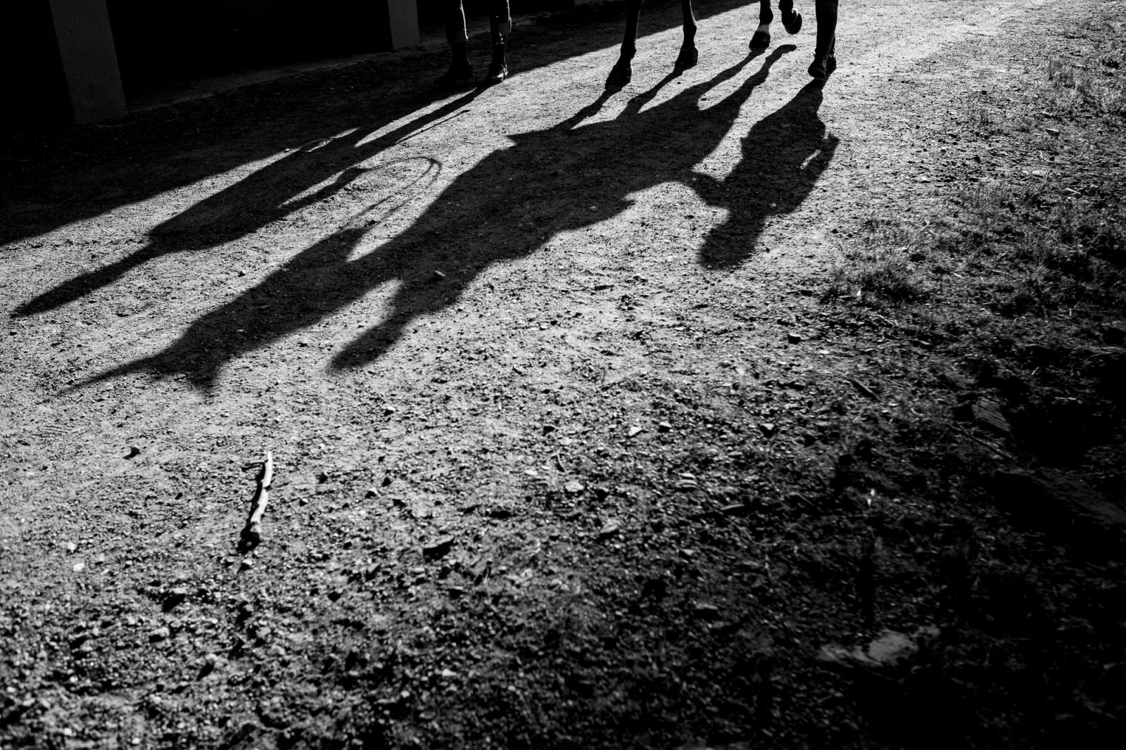 fotos de novios a caballo en malaga
